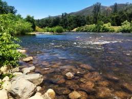 Villa Agave Experience American River